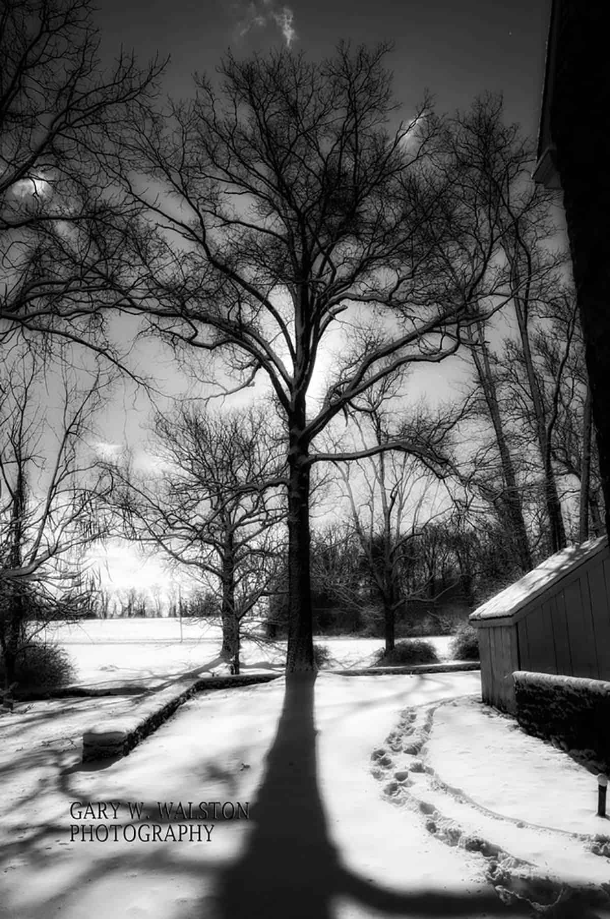 scenic-photography-014
