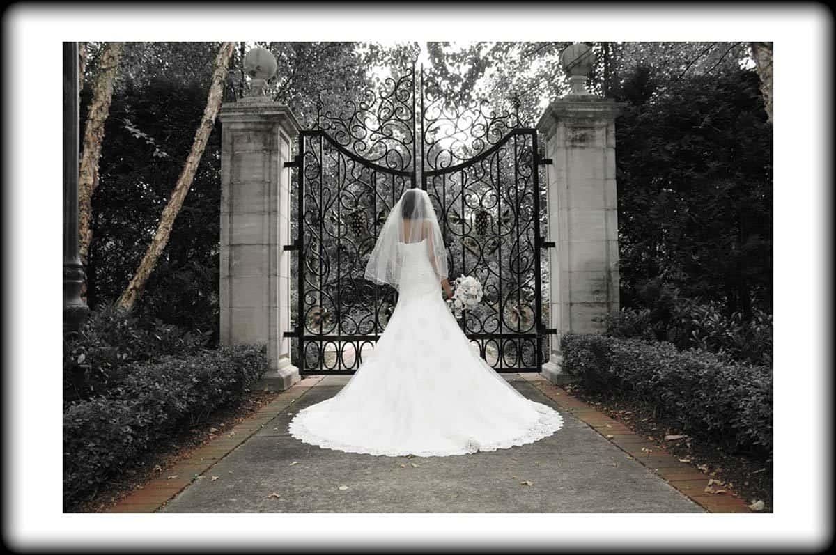 wedding-photography053